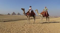 Have wonderful vacation while enjoy visiting Egypt and get to know more about the ancient history with #EgyptDayTours, you will have the chance to visit the most interesting tourism attraction cities such as Cairo, Luxor, Aswan, Hurghada and Sharm El-Sheikh etc.