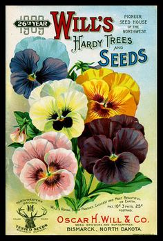 1909 Will's Seed Company Catalog Cover.