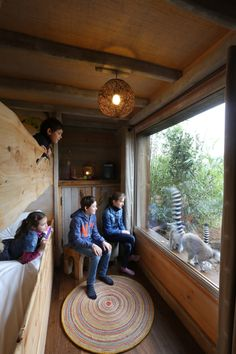 Lemur Window