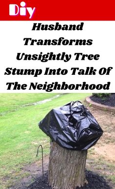 Husband Transforms Unsightly Tree Stump Into Talk Of The Neighborhood Diy Crafts For Girls, Diy Crafts For Home Decor, Diy Arts And Crafts, Diy Furniture Projects, Diy Pallet Projects, Cool Diy Projects, Amazing Life Hacks, Useful Life Hacks, Amazing Facts