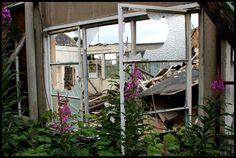 Demolished dye factory. Naylor Jennings. Jess Turver photography.