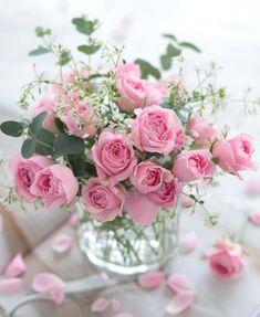 Beautiful Rose Flowers, Beautiful Flower Arrangements, Romantic Flowers, Floral Arrangements, Beautiful Flowers, Shabby Flowers, Pink Flowers, Foto Rose, Happy Birthday Flower