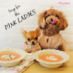 SOUP FOR THE PINK LADIES ♥