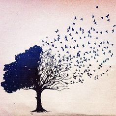 Tree and birds, this picture symbolizes freedom to me, yet being firmly grounded by my roots.