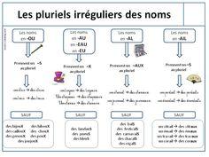 Les pluriels irréguliers des noms (leçon) - Loustics