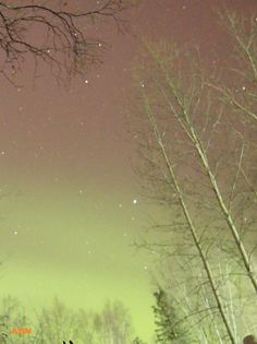green skies in North Pole 3-4-13    the LATEST ALERTS! | Aurora Borealis Notifications | a network for Alaskans to get real time notifications of the aurora visible in the sky.