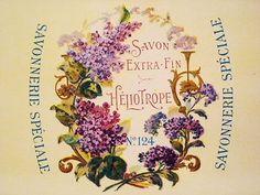 サボンラベル - イギリスとフランスのアンティーク | バラと天使のアンティーク | Eglantyne(エグランティーヌ)