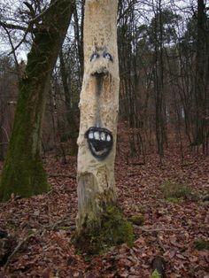 The Tree Project (Zonenkinder)