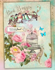 Bird Beauty Large Image digital collage sheet by bydigitalpaper