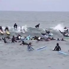 Extreme drop-in crowded surf.- Extreme drop-in crowded surf. Extreme drop-in crowded surf. Big Wave Surfing, Surf Wave, Surfing Girls, Wind Surf, Surfing Videos, V Video, Surfing Pictures, Sup Surf, Funny Video Memes