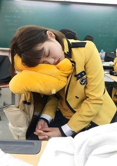 """𝕳 𝖔 𝖓 𝖊 𝖞 𝕭 𝖎 𝖙 𝖈 𝖍さんのツイート: """"Why momoland deserves better; a thread… """" Jungkook School, Sopa School, Aesthetic Korea, Daisy, Survival, Girl Sleeping, Character Base, Ulzzang Girl, These Girls"""