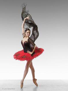 Via Lois Greenfield Photography : Dance Photography : American Ballet Theatre Dancers Ballet Tutu, Ballet Dancers, Ballerinas, Melanie Hamrick, Lois Greenfield, Dance Images, Dance Pictures, American Ballet Theatre, Ballet Photos
