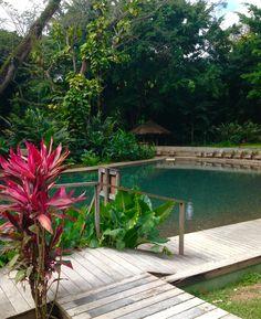 YS Falls Jamaica Natural Pool