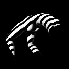 Zebra 07, 1988, Francis Giacobetti, reconnu comme l'un des plus grands photographes contemporains, récipiendaire de prestigieux prix de photographie et de direction artistique, nous présente une série mythique, ZEBRAS (ou Optic Stripes). Des nus vêtus d'ombres. Des corps dévoilés par la lumière. Un jeu magistral d'éclairages qui dessinent des formes sculpturales.