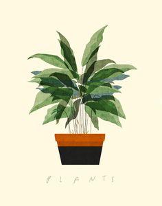 """""""Plant 2"""" - A Giclée Print by Dadu Shin"""