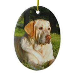 Pet Memory Ornament - Make Your Own