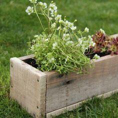 Une jardinière en planches de chantier