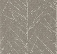 Tali Gilver and Graphite wallpaper by Anthology