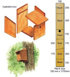 Nichoir pour mésanges / British Trust for Ornithology - DIY instructions for small hole nest boxes ideal for blue tits and great tits Bird Nesting Box, Nesting Boxes, Bird House Plans, Bird House Kits, Bird House Feeder, Bird Feeders, Garden Projects, Diy Projects, Pallet Projects