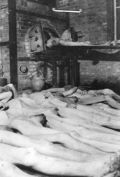 Corpses laid out for cremation inside Mauthausen.  At top, a corpse is being conveyed into the oven.