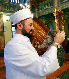 Man Opens Up Mosque's Doors For Stray Cats And Kittens