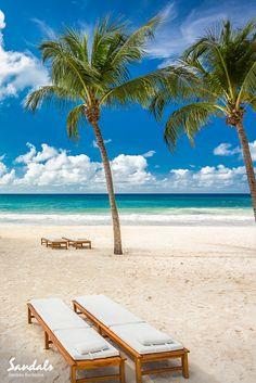 8eeffef1b35985 Dover Beach at Sandals Barbados. Barbados Beaches