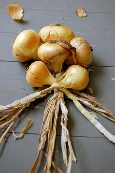 Braiding Onions - easy...pinner:  I loved doing this with our onions and they would last through Spring time.