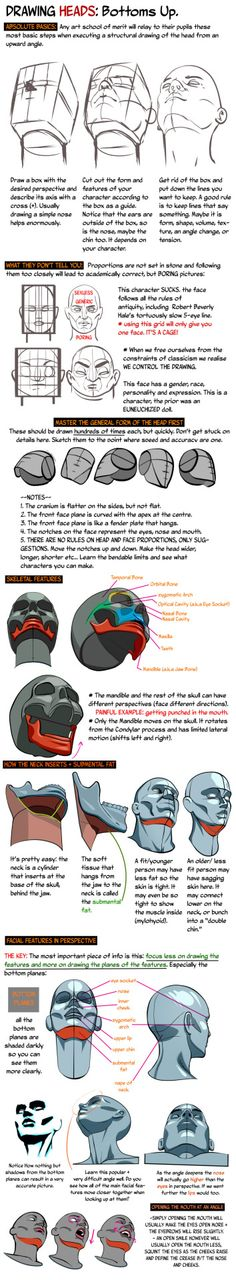 HEADS UP: Drawing the Head from a low angle. by... -                                         How to Art
