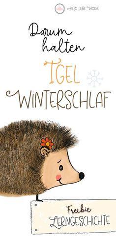 """Warum halten Igel Winterschlaf? Eine Geschichte für Kinder im Kindergarten und Kita zum Thema Herbst. Ein Freebie und eine kostenlose Lerngeschichte vom Mamablog """"Hallo liebe Wolke""""."""