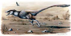PALAEOBLOG: Dakotaraptor steini, Giant Raptor From The Hell Creek Formation