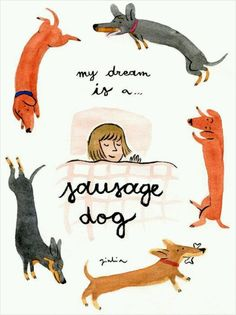 This is every night for me...Sausage dog  @Jess Pearl Liu Grinsteinner Treffry #bedachshing.