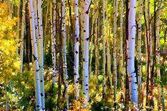 Featured Art - Aspen Grove by Allen Beatty