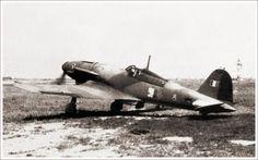 Italian Air Force, Ww2 Aircraft, African Animals, Hush Hush, Fiat, World War Ii, Wwii, Fighter Jets, Aviation