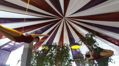 The Events Draping Co. created this candy-striped Big Top for Agency in Cape Town. Events draping that made a bold statement for this corporate event. Big Top, Candy Stripes, Draping, Cape Town, Corporate Events, Wedding Planner, Backdrops, Create, Gallery