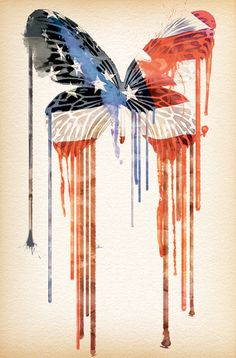 United States of Butterfly by Giuseppe Gambardella