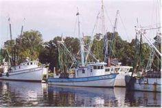 Shrimp Boats at Independent Seafood
