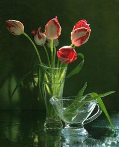Цветы в вазах.