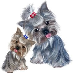 Dog Illustration, Illustrations, Puppy Crafts, Baby Animals, Cute Animals, Yorshire Terrier, Dog Wallpaper, Yorkie Puppy, Cute Dogs And Puppies