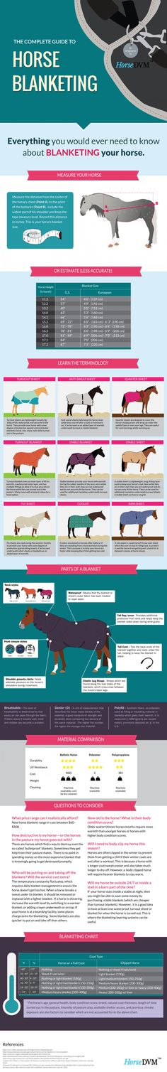 The Complete Guide to Horse Blanketing - I wish I ha this before I bought my blankets! So useful