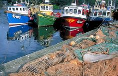 Le port coloré de Stornoway en Ecosse...   #ecosse #stornoway #scotland #alainntours Scotland, Nan, Travel, Tweed, Centre, British Isles, White Sand Beach, Scotland Trip, Wales