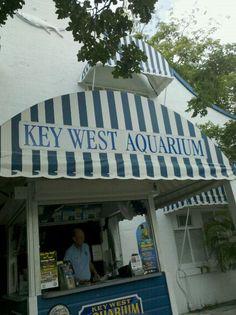 Key West Aquarium in Key West, FL