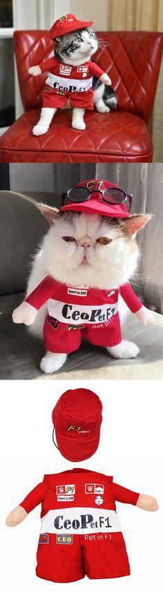 Déguisement pilote formule 1 pour chien chat