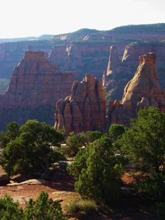 Colorado National Monument - Canyon Rim