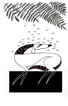 Graça lima - desenhos