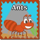Free Ant Preschool Unit - counting, letter sorting, mazes, life cycles, and number order Preschool Themes, Preschool Printables, Preschool Science, Free Preschool, Free Printables, Insect Activities, Toddler Activities, Fun Activities, Insect Crafts