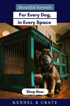 This contains: A beautiful green kennel with a puppy sitting in front of it on hardwood floor. Dark blue boarder with white and blue writing. Luxury Dog Kennels, Wooden Dog Kennels, Crate Training, Training Your Dog, Gifts For Pet Lovers, Dog Lovers, All Types Of Dogs, Puppy Sitting, Dog Furniture