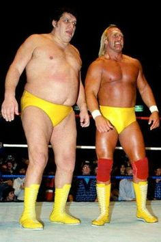 ANDRE THE GIANT / HULK HOGAN