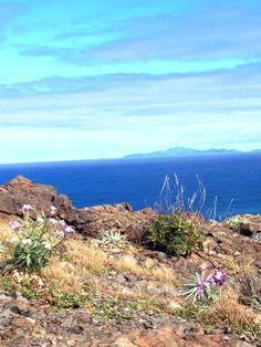Meditation og vandring på Madeira, Portugal   14. - 21. januar 2017 - Trænger du til at koble af fra en travl hverdag? Giv dig selv muligheden for at finde indre ro og livsglæde, så du kan overskue en travl hverdag. Tag med på en rejse, hvor du både kan være aktiv og finde indre ro og balance. Vi gentager turen til Madeira,