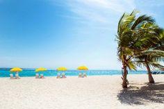 3-Night Tropical Getaway in Beautiful Miami, FL Orlando Vacation, Vacation Deals, Vacation Resorts, Vacation Trips, Vacation Spots, Vacation Packages, Vacation Travel, Travel Deals, Best Cheap Vacations