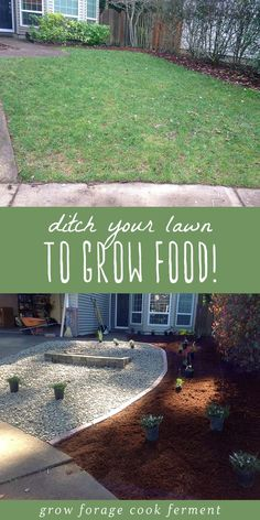 Grow food not lawns! Who needs silly high maintenance grass anyways? Heres how to ditch your lawn, transform it into a low maintenance permaculture garden, and grow food instead. #permaculture #garden